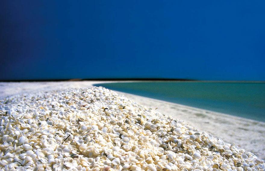 Ракушечный пляж Австралия