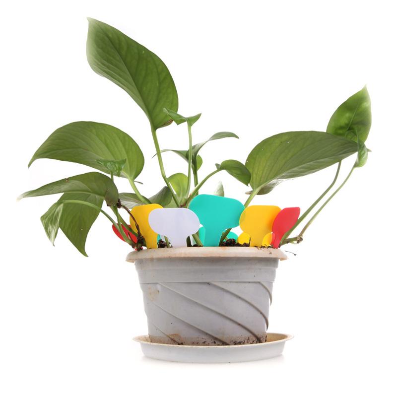 Бирки для растений и цветов